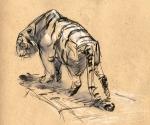 Tiger_Sketch_1_B